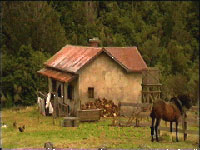 Cottage with Horse