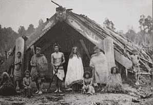Maori dwelling in the 19th century