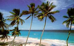 polynesia_island